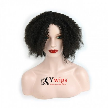 Glueless Preplucked Afro Peruvian Hair Human Hair Lace Front Wig AFP11